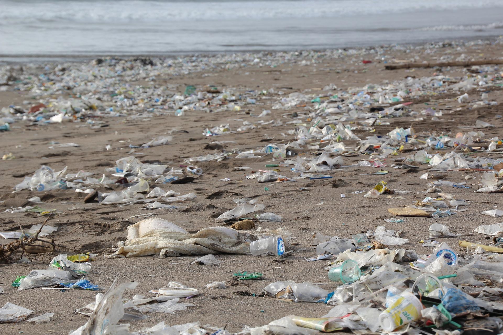 ContaminacionPlasticos - Día mundial de los Océanos, 2019