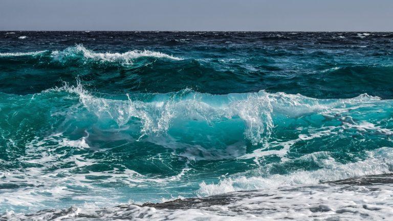 Dia Oceanos 1920 768x432 - Labecos