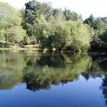 Lago desde Dique 150x150 - MBSR, Ejercicios de Flexibilidad, 8-4/2019