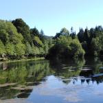 Lago desde barbacoa 150x150 - MBSR, Ejercicios de Flexibilidad, 8-4/2019