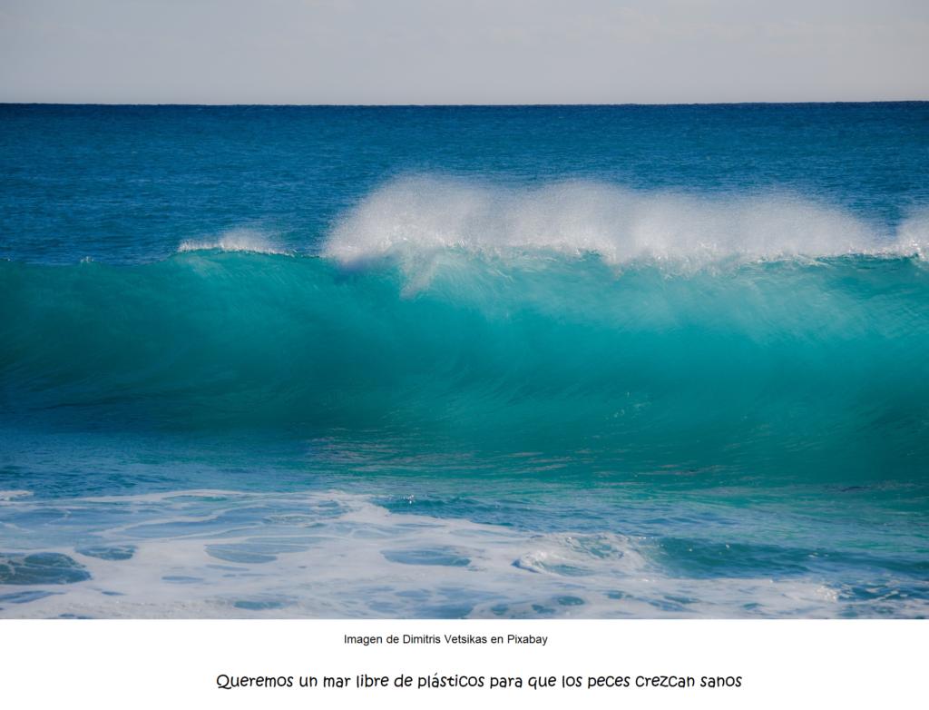 Mar transparentePop 1920 1024x782 - COVID-19, la salida