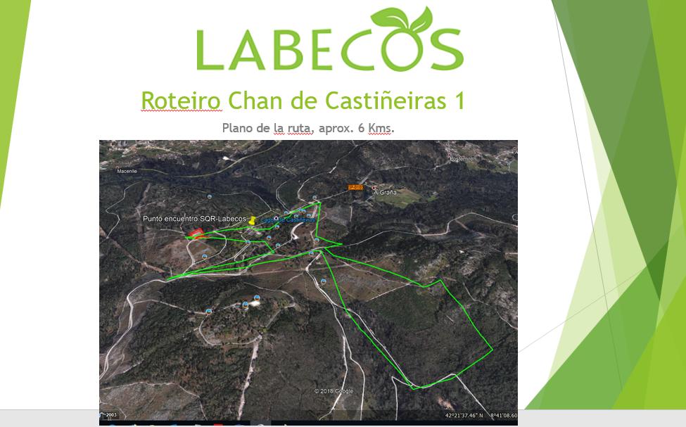 Roteiro Chan Castiñeiras 1 - Charla - Coloquio, Servicios ambientales avifauna