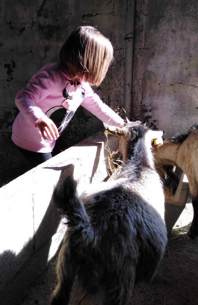 Xoana2 667x1024 - Visita, Alimentar cabritas Lago