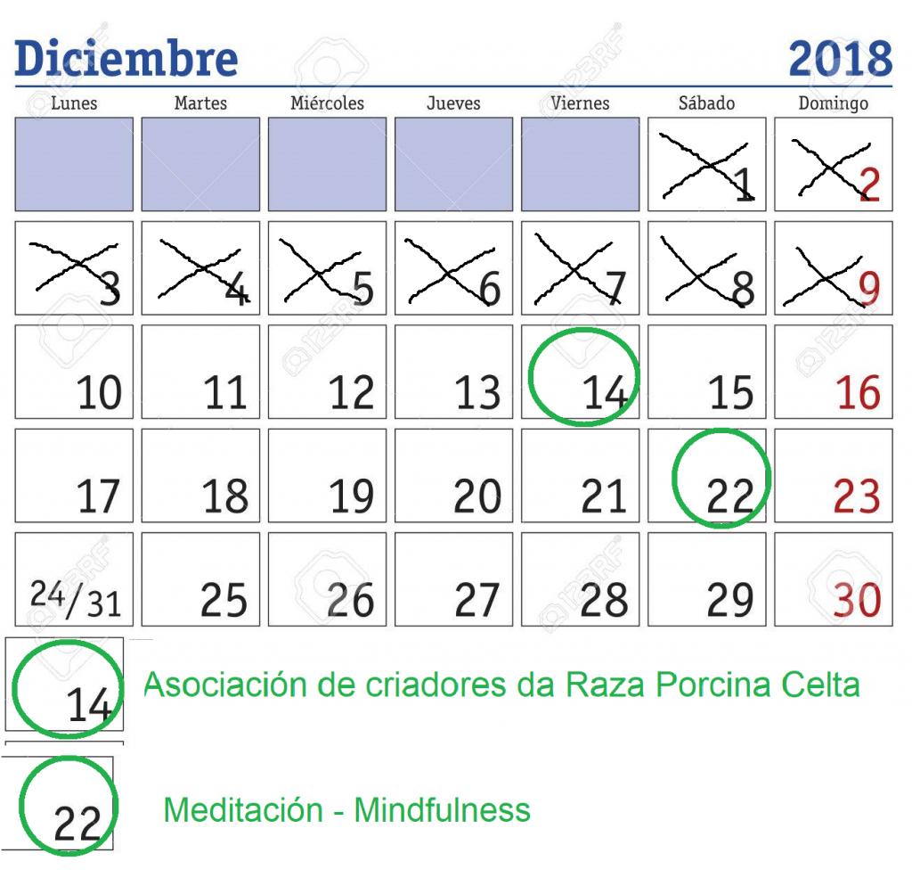calendario Actividad2018 1024x994 - Previo próxima actividad Dic. 2018